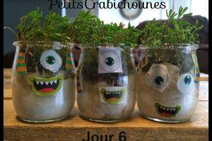 Faire pousser des lentilles, coton et pots monstres !