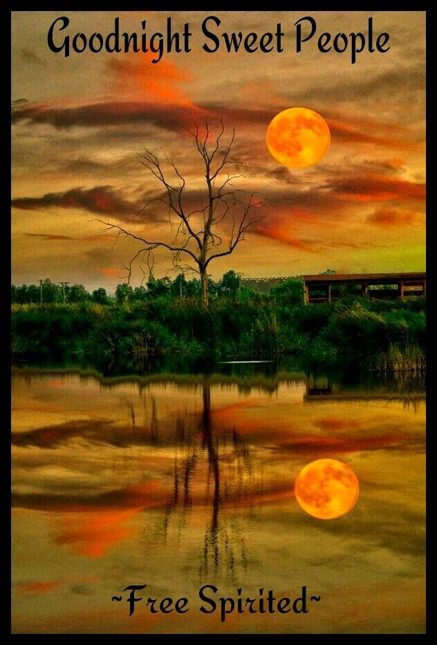 Goodnight pictures photos and images for facebook - Good night nature pic ...