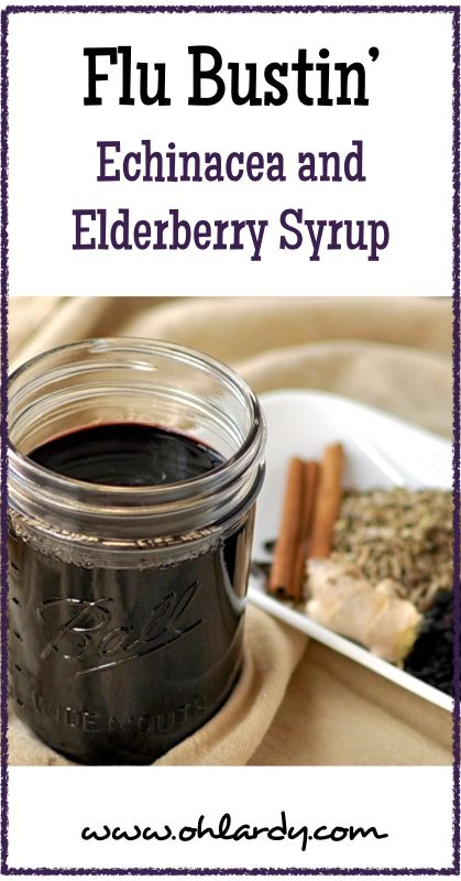 Flu Bustin' Echinacea and Elderberry Syrup - www.ohlardy.com -sub maple syrup or apple honee for honey