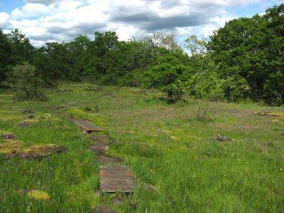 Camassia Natural Area Park