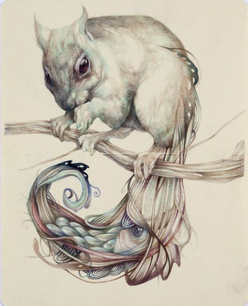 """The Chemical Squirrel"" 2012, colored pencils and ink on paper, cm 26x21-Marco Mazzoni"