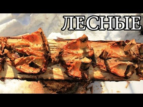 Дикая кухня - ЖАРЕНАЯ РЫБА НА ДОСКЕ | Деревянные гвозди - Planked Fish - YouTube