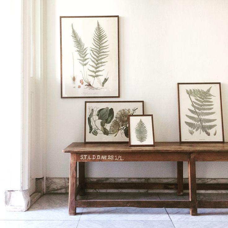 Skonating Botanical | Image via Instagram @laifennuver