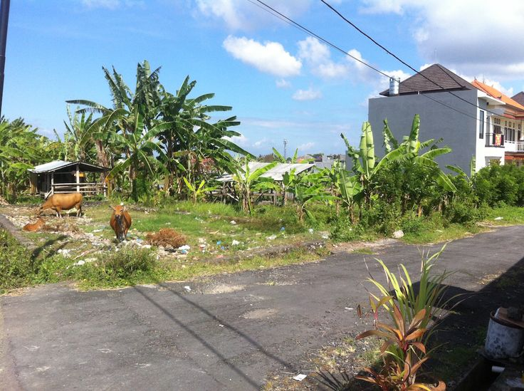 TANAH 1.28 ARE. JL MADE BULET. KUTA UTARA BADUNG. - Bali Best Property
