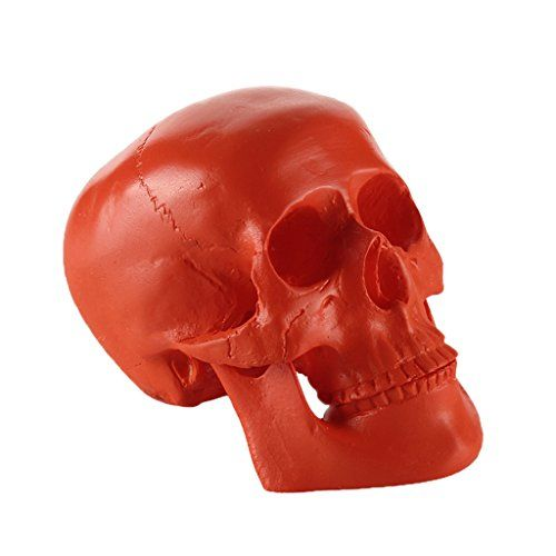 Generic Resin Replica Human Skull Model Medical Party Horror Halloween Prop Home Decor  Orange * Check this awesome product by going to the link at the image.  This link participates in Amazon Service LLC Associates Program, a program designed to let participant earn advertising fees by advertising and linking to Amazon.com.