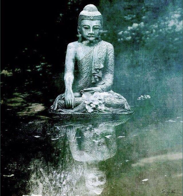 1000 images about buddha statues on pinterest gautama buddha buddhists and sri lanka. Black Bedroom Furniture Sets. Home Design Ideas