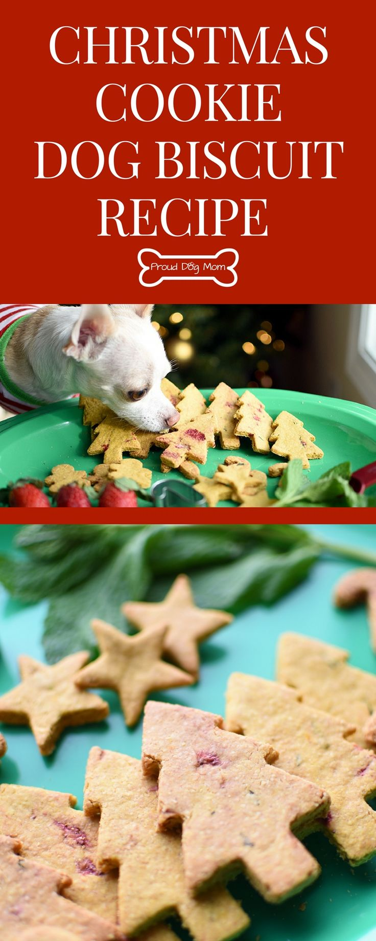 Christmas Cookie Dog Biscuit Recipe To Spoil Your Pups This Holiday | Gluten-Free Dog Biscuit Recipe | Dog Treat Recipe | Healthy Dog Treat Recipe | Easy Recipe |