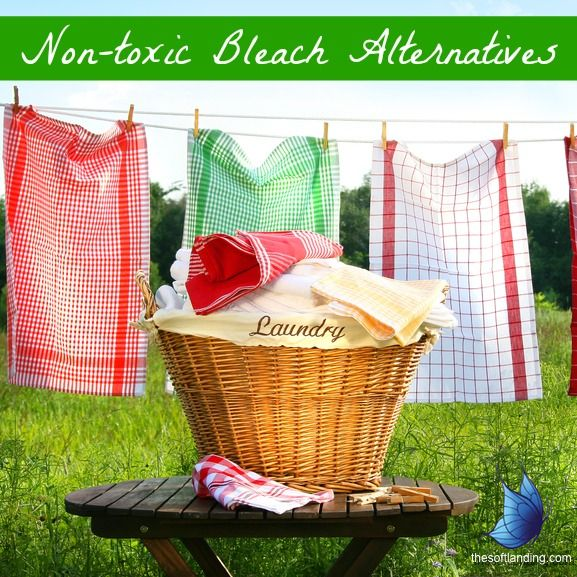 Effective and Non-toxic Bleach Alternatives from thesoftlanding.com