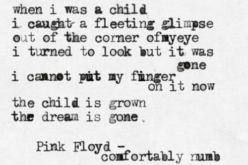 """the child is grown/ the dream is gone"" -Pink Floyd - Comfortably Numb"