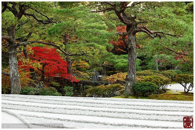 Garden at Ginkaku-ji Temple