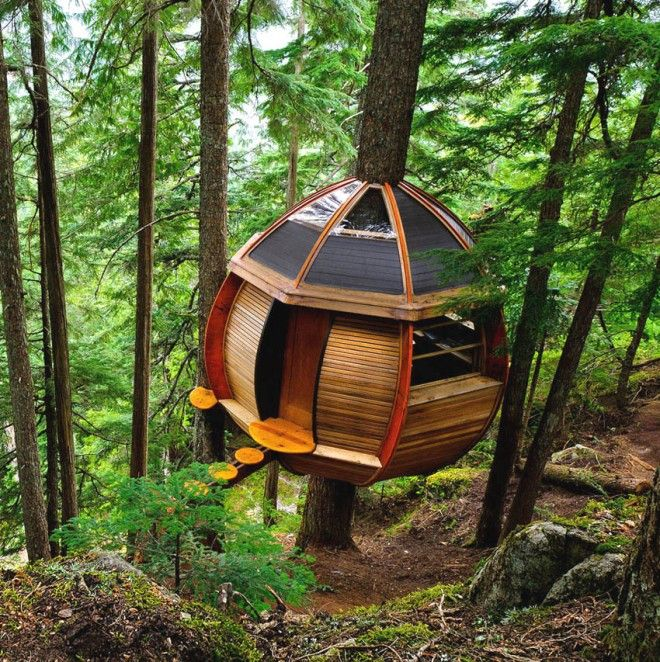 Cool Kids Tree House 274 best træhus images on pinterest | treehouses, architecture and