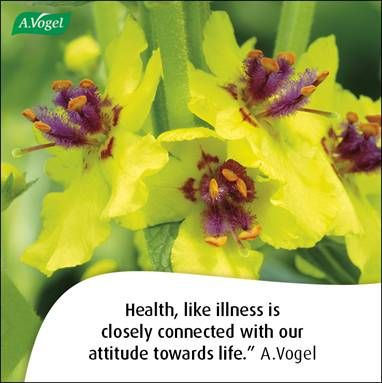 Health, like illness is closely connected with our attitude towards life. A.Vogel