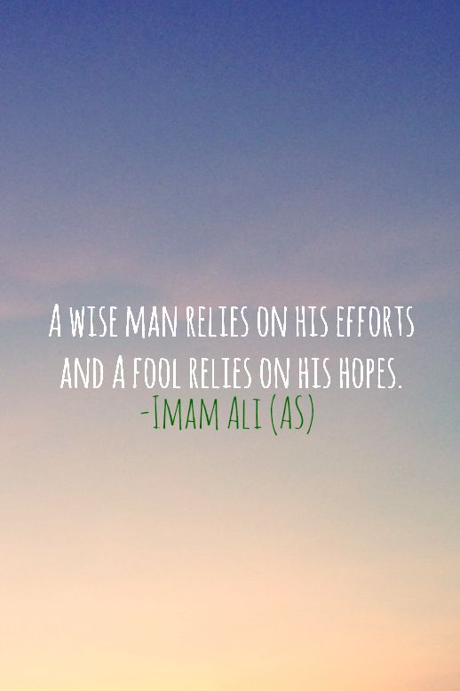 A WISE MAN RELIES ON HIS EFFORTS AND A FOOL RELIES ON HIS HOPES. -Imam Ali (AS)