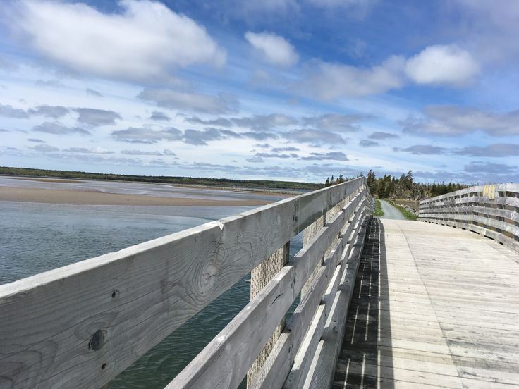 Salt marsh trail, cole harbour