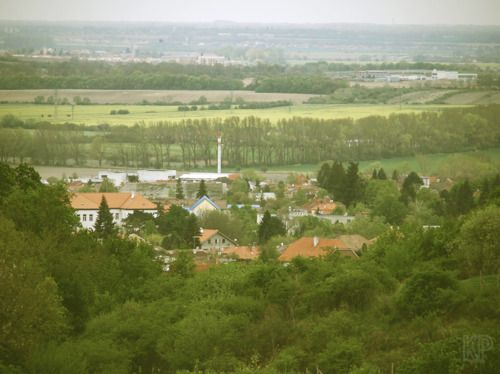 Modra (Slovakia)