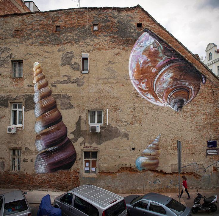 snails-1-new