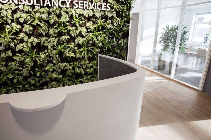 Impact reception desk in Corian®   Receptionsdisk i Corian® curved reception desk, buet receptionsdisk