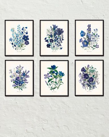 Fleurs De Jardin Blue Series Print Set
