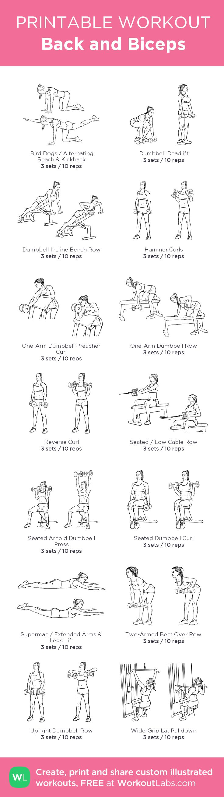 Back and Biceps: my visual workout created at WorkoutLabs.com • Click through to customize and download as a FREE PDF! #customworkout