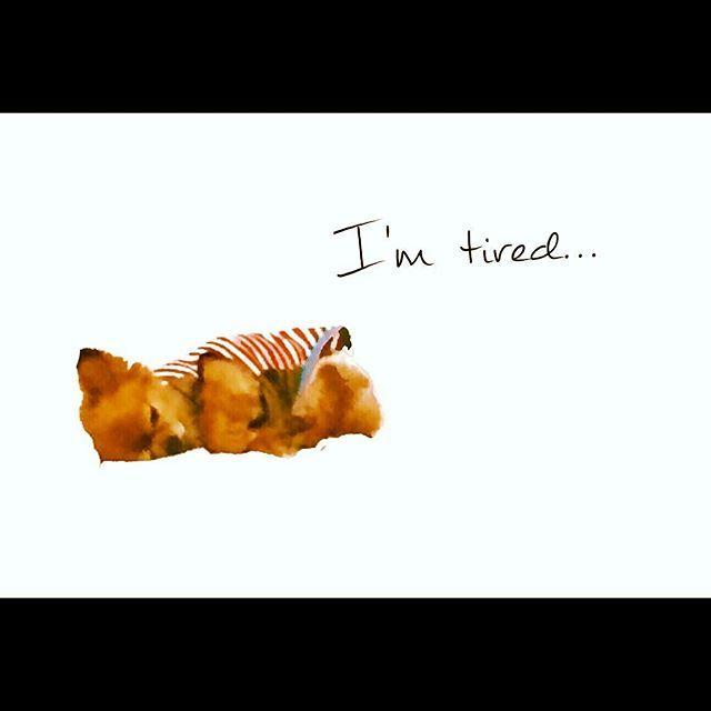 I wanna meet you😢 #たいが #チワワ #aomori#mypet#dog#tired#goodnight#like4like#cute#チワワ#愛犬