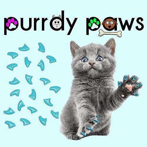 Soft Nail Caps For Cat Claws SKY BLUE  MEDIUM SIZE  Purrdy Paws Brand >>> You can get additional details at the image link.(This is an Amazon affiliate link and I receive a commission for the sales)