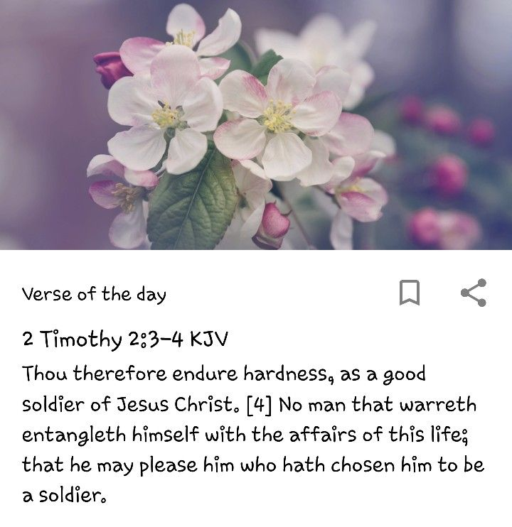 2 Timothy 2:3,4   King James Bible   2 timothy, Bible verses