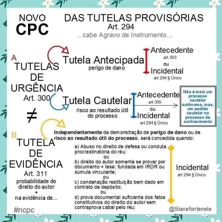 Das Tutelas Provisórias