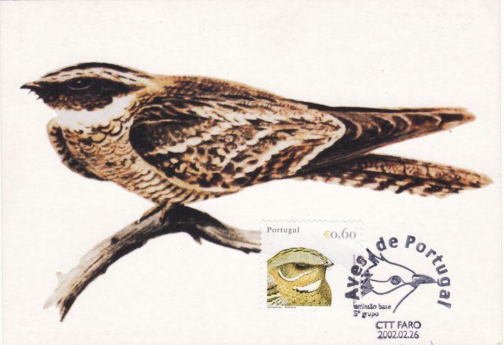 """Noitibó-de-nuca-vermelha trata-se de uma ave semelhante ao gavião, embora os seus hábitos nocturnos e as janelas brancas na cauda e asas permitam de imediato separar as duas espécies.  O Algarve é sem dúvida, um dos melhores locais para a observação. Emissão: Portugal, emissão base 5.º grupo """"Aves de Portugal """" - 2002 Obliteração: Carimbo 1.º dia de emissão - Faro - 26/02/2002 Postal: Editado Deltiológica"""
