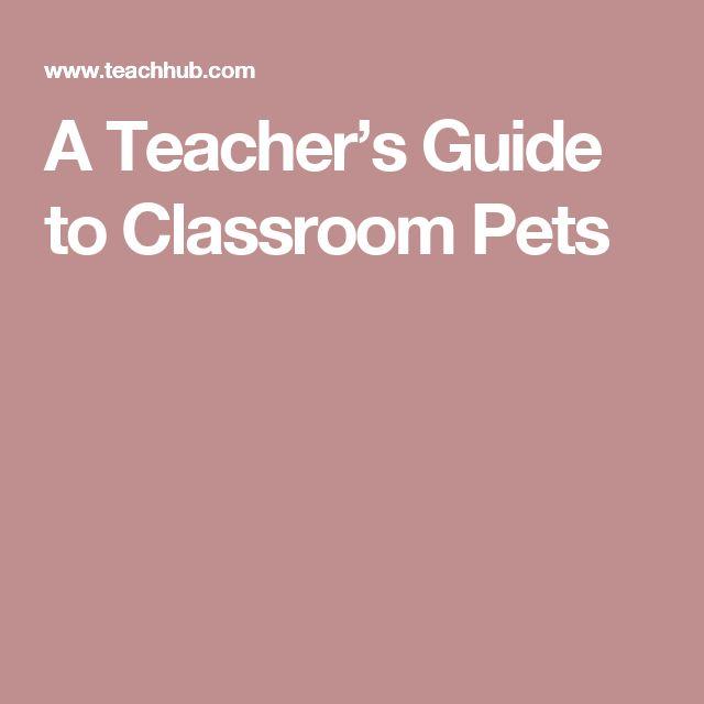 A Teacher's Guide to Classroom Pets