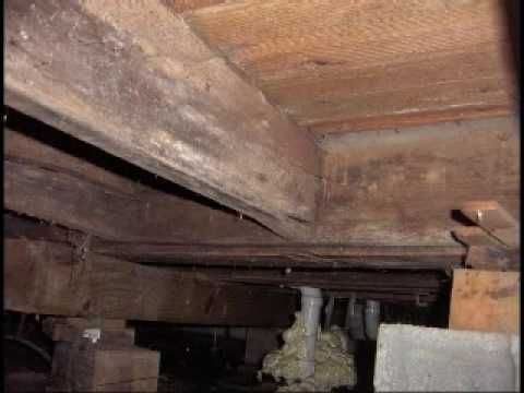 CRAWL SPACE MOISTURE PROBLEMS AND BLACK MOLD   YouTube