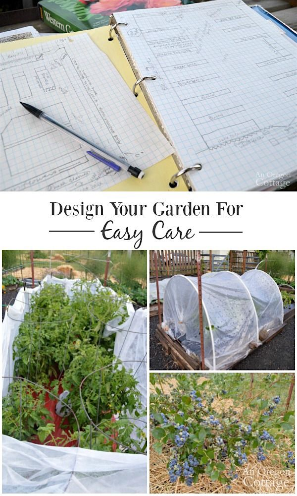Organic Garden Design Interesting Design Decoration