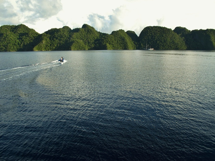 Do you love #diving? Make 2013 the year you go to #RajaAmpat, it's simply spectacular! #Papua