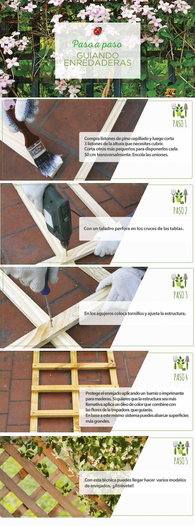 #Enredaderas #Jardinería #PasoApaso #Easy