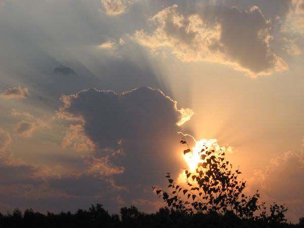 Последние лучи солнца