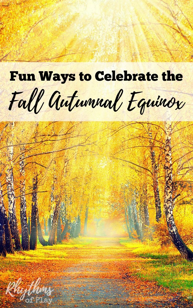 The fall autumnal equinox marks the official beginning of fall in the northern hemisphere. In the southern hemisphere, the vernal equinox occurs on…
