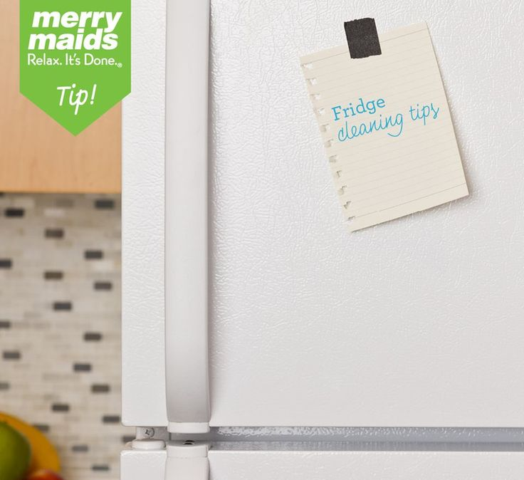 Merry maids fridge cleaning tips