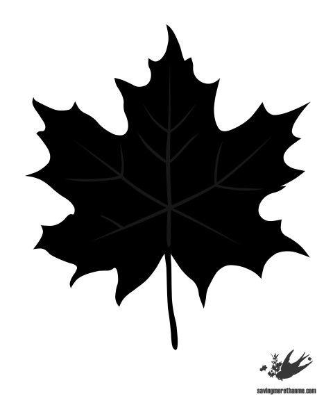 Best 25+ Fall leaf template ideas on Pinterest Leaf template - leaf template