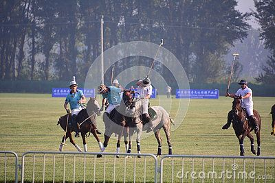 The 2016 Beijing International Polo Open tournament finals in September 24th in Beijing, Yanqing to participate in the competition. Batting swing states Chinese, Britain, New Zealand, Kyrgyzstan four teams, the last New Zealand team than the 7 to 4 Lectra warlords, won the title. The match interval, also had a wonderful equestrian performances, attracting a large number of polo fans.