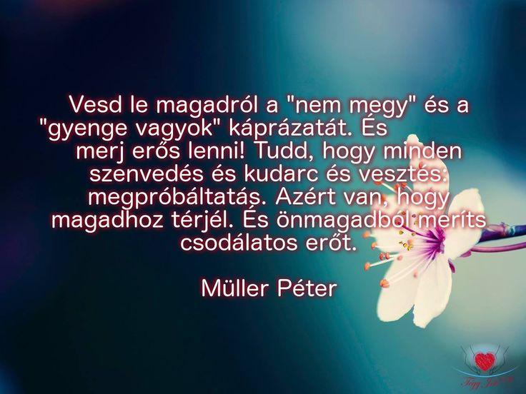 """""""Vesd le magadról a """"nem megy"""" és a """"gyenge vagyok"""" káprázatát. És merj erős lenni! Tudd, hogy minden szenvedés és kudarc és vesztés: megpróbáltatás. Azért van, hogy magadhoz térjél. És önmagadból meríts csodálatos erőt."""" Müller Péter"""