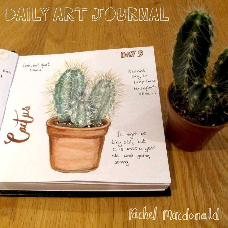 Daily Art journal Day 9 - Cactus