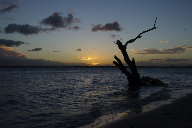 #sun #sunset #dusk #evening #water #sand #photography #landscape #bribie Island #clouds #queensland #qld #australia