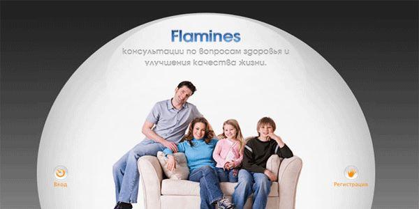 Корпоративен сайт на Flamines