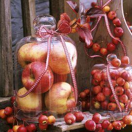 7 idee facili per la casa in autunno - Fai da te | Donna Moderna