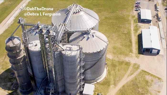 Grain Markets: Post-Election Risks – Are You Prepared?
