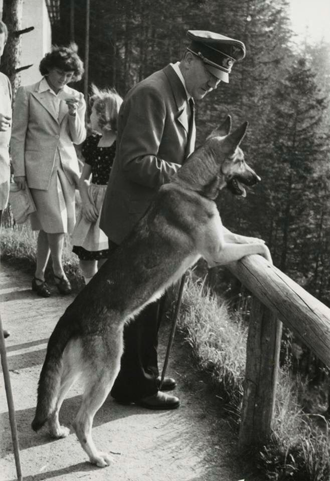 Adolf Hitler and his favorite canine Blondie. He poisoned her just before he and his wife Eva Braun committed suicide on April 30, 1945.