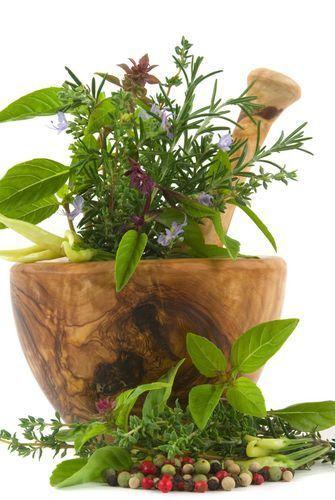 Vo všeobecnosti môžeme rozdeliť bylinky do dvoch základných skupín, a to  na olejovité bylinky a na vodnaté bylinky. Nie je vôbec ľahké  odpovedať, ktorá bylinka sa načo hodí, ale rozdiel odhadneme po pridaní  do samotného jedla. Pre vodnaté bylinky je typické, že nechnú príliš  dobre, majú svoju prchavú arómu a rýchlo zatuchnú. Pre olejovité bylinky  platí, že veľmi dobre schnú a svoju arómu uvoľňujú do pokrmov pomaly.  Dá sa predpokladať, že olej v bylinkách chráni rastlinky pred…