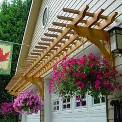 Arbor over garage doors.. With hanging planters not climbing vines, better for avoiding bugs & wet.