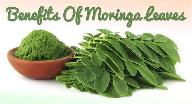 Promote Hair Growth and Beautiful Skin by Adding Moringa to Your Beauty Regimen  Read the article here - http://www.blackhairinformation.com/growth/hair-growth/promote-hair-growth-beautiful-skin-adding-moringa-beauty-regimen/