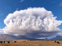Spektakularne chmury burzowe zawisły nad Polską