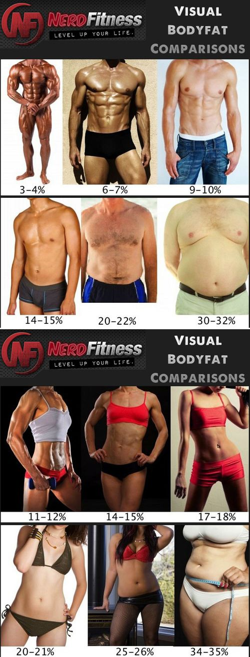 Body fat index for women other